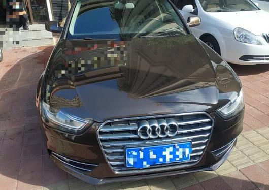 2014-04 奥迪 奥迪A4L 2013款 40 TFSI quattro个性运动型